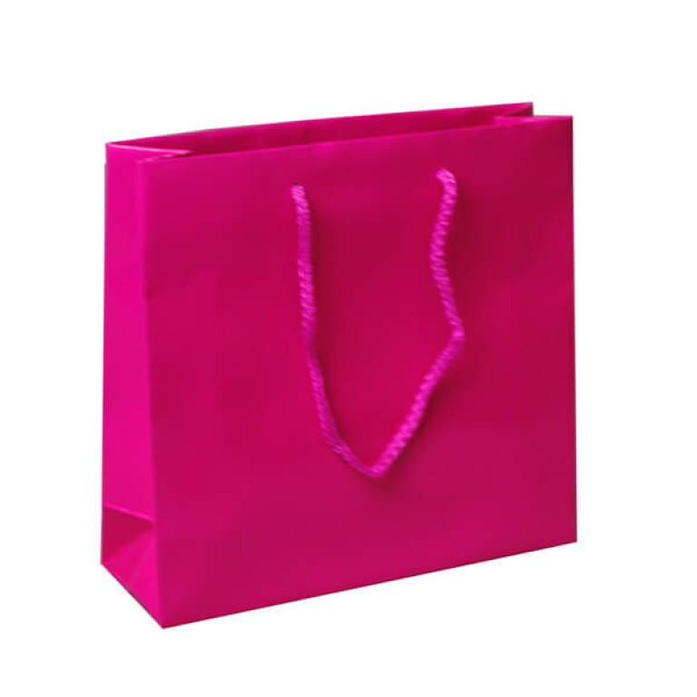 Accessory Carrier Bag (cerise)