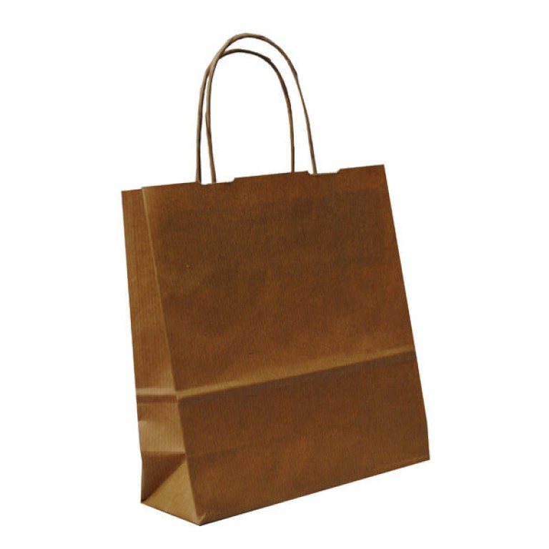 Brown paper gift bags with handles shopfittings for Brown paper craft bags