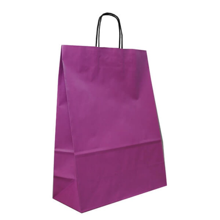 Plum Paper Carrier Bags For Clothes