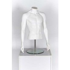 Male White Headless 1/2 Torso With Arms